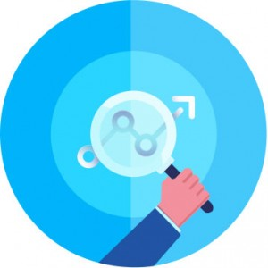 optimizare site timisoara