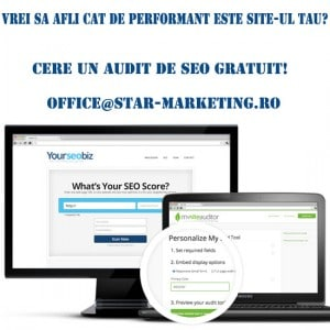 AUDIT-de-seo